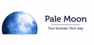Pale Moon 28.13.0 Crack 2021